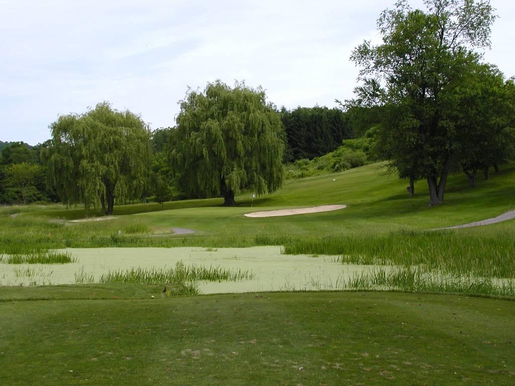 Tioga Golf Club Hole 6