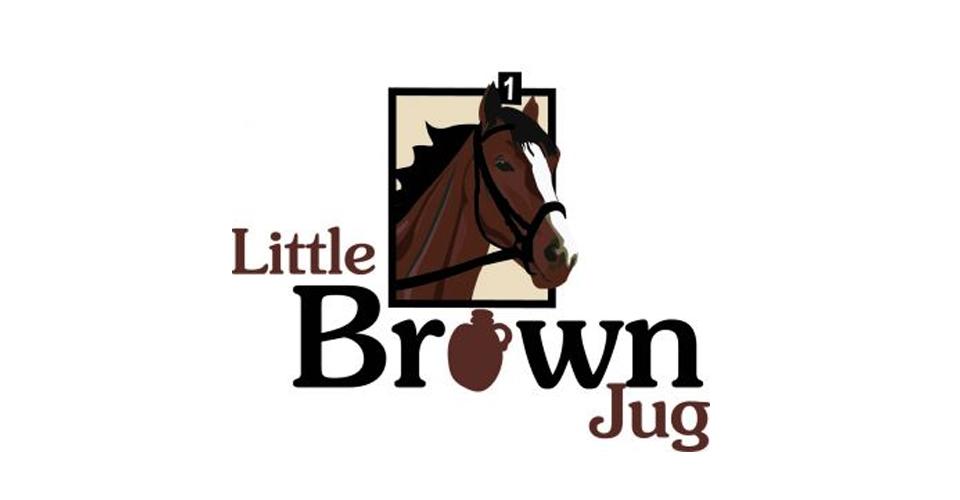 LittleBrownJug-small